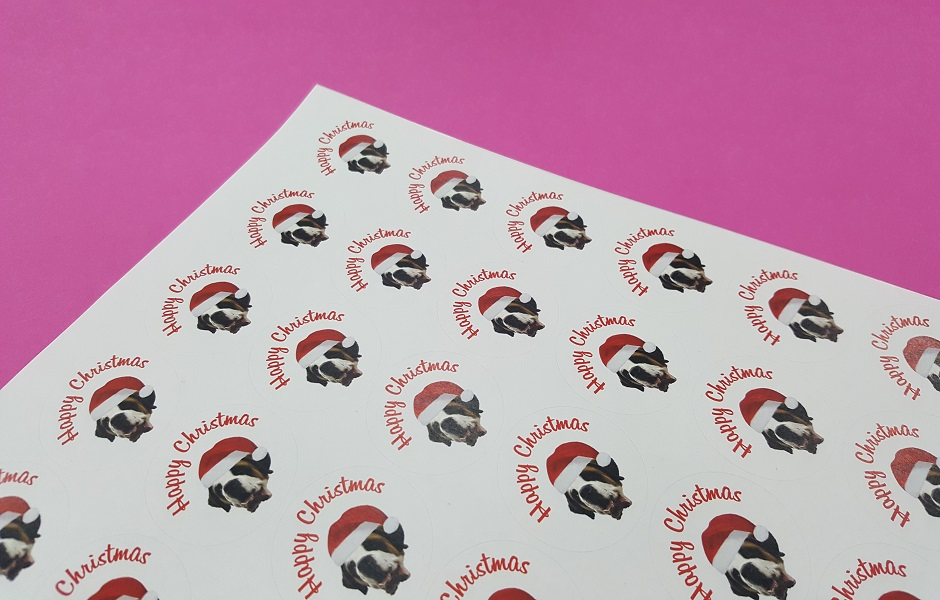 Circular Sticker Printing in Norwich.
